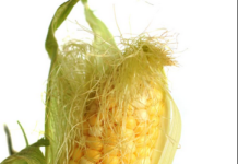 Health benefits of corn silk