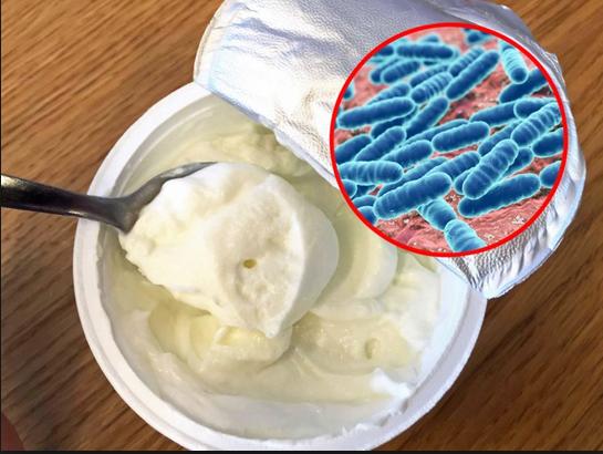 Lacto-fermentation health benefits