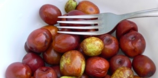 Fresh jujube fruit