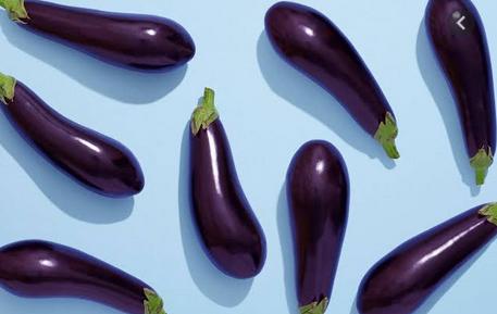 Nutritious purple foods eggplant