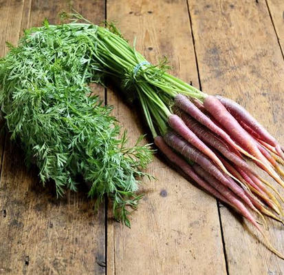 nutritious purple foods purple carrots