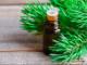 Pine esential oil